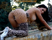 Travesti Jamilly D`castro 9