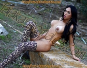 Travesti Jamilly D`castro 10